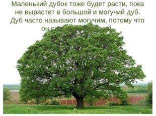 Маленький дубок тоже будет расти, пока не вырастет в большой и могучий дуб. Д