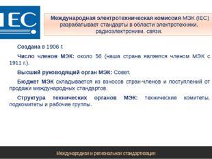 Международная электротехническая комиссия МЭК (IЕС) разрабатывает стандарты