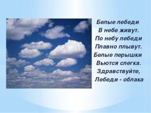 Белые лебеди В небе живут. По небу лебеди Плавно плывут. Белые перышки Вьютс