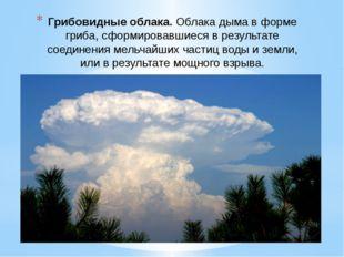 Грибовидные облака.Облака дыма в форме гриба, сформировавшиеся в результате