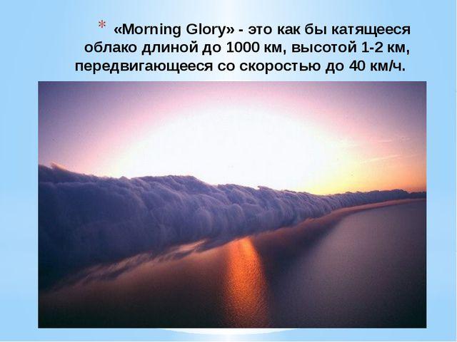 «Morning Glory» - это как бы катящееся облако длиной до 1000 км, высотой 1-2...