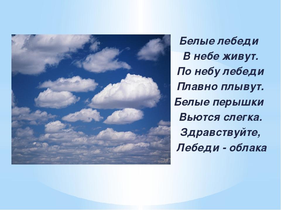 Белые лебеди В небе живут. По небу лебеди Плавно плывут. Белые перышки Вьютс...