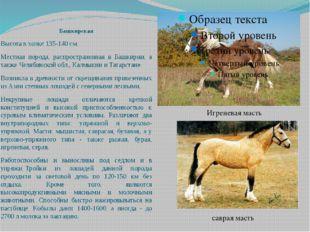 Башкирская Высота в холке 135-140 см. Местная порода, распространенная в Башк