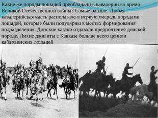 Какиеже породы лошадей преобладали вкавалерии вовремя Великой Отечественно