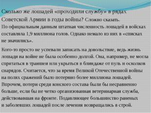 Сколькоже лошадей «проходили службу» врядах Советской Армии вгоды войны? С