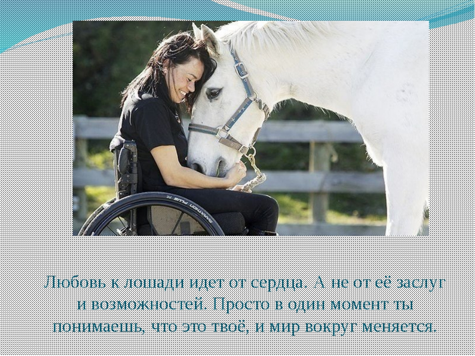 Любовь к лошади идет от сердца. А не от её заслуг и возможностей. Просто в од...