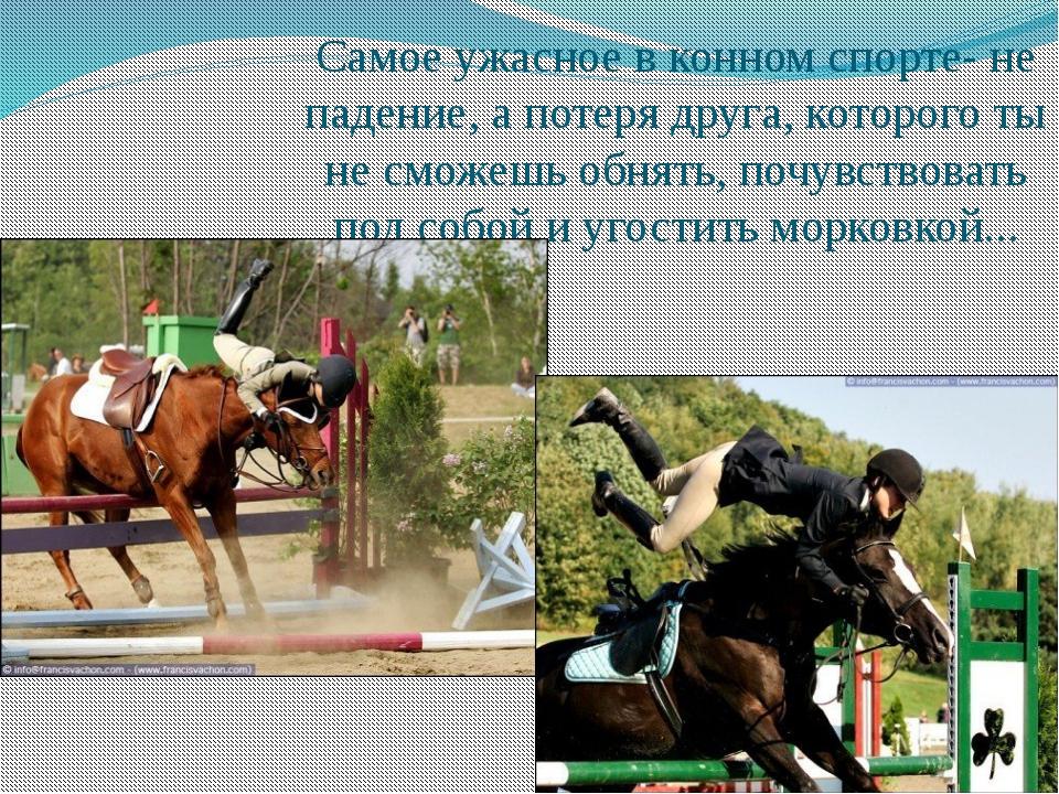 Самое ужасное в конном спорте- не падение, а потеря друга, которого ты не смо...