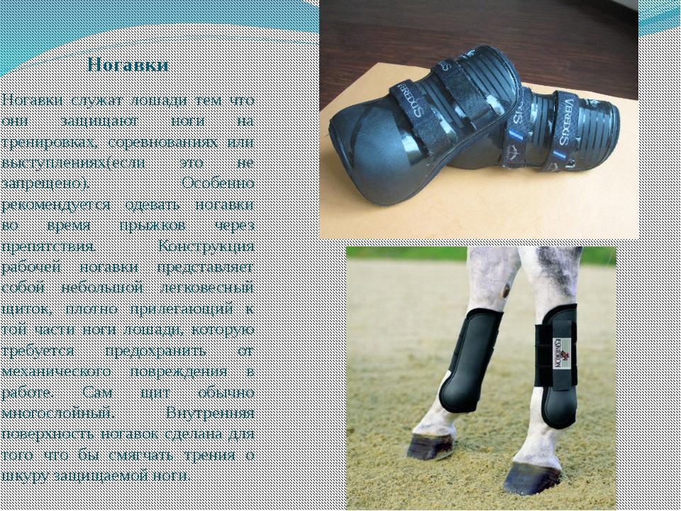 Ногавки Ногавки служат лошади тем что они защищают ноги на тренировках, сорев...