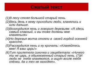 Сжатый текст (1)В лесу стоял большой старый пень. (2)Весь день к нему приходи