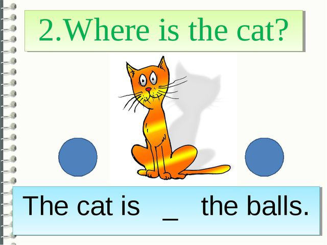 2.Where is the cat? The cat is _ the balls.