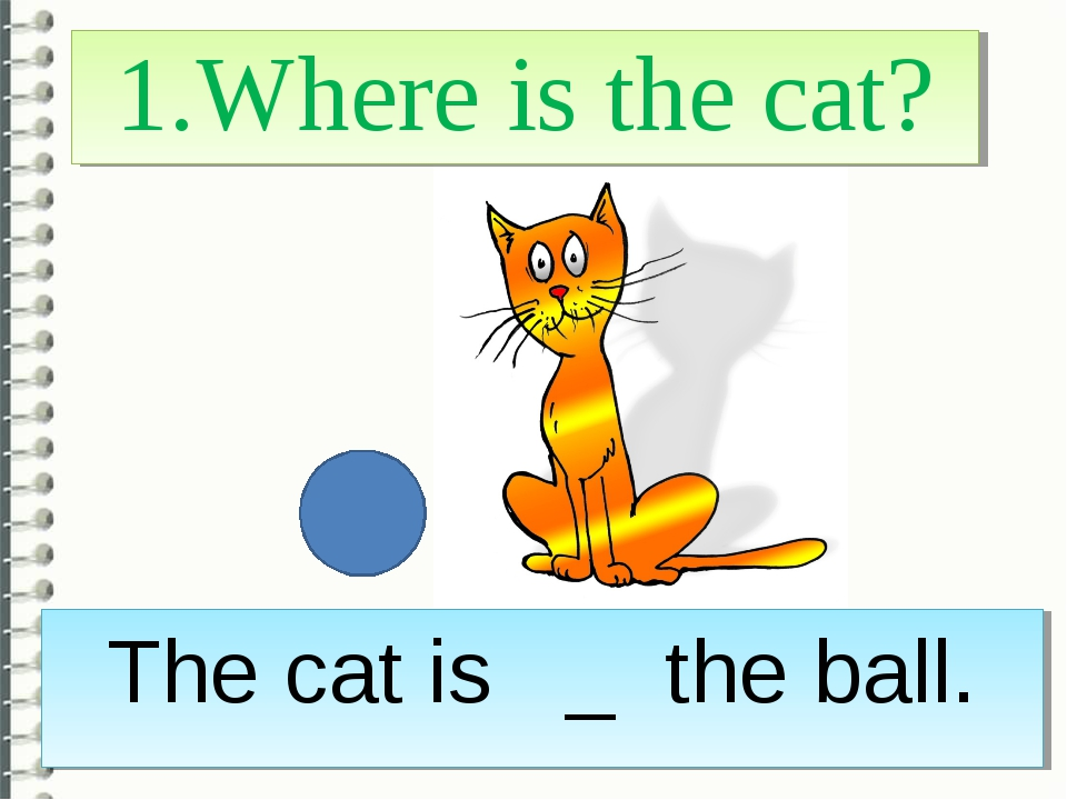 1.Where is the cat? The cat is _ the ball.