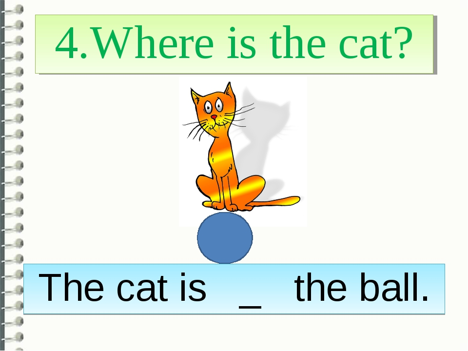 4.Where is the cat? The cat is _ the ball.