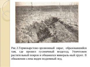 Рис.3.Термокарстово-эрозионный овраг, образовавшийся там, где прошел гусеничн
