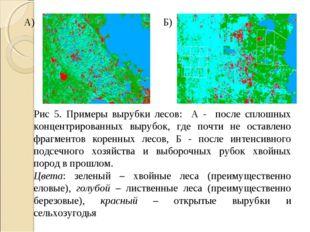Рис 5. Примеры вырубки лесов: А - после сплошных концентрированных вырубок, г