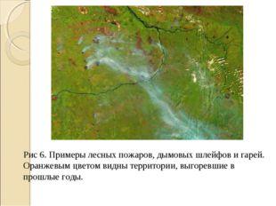 Рис 6. Примеры лесных пожаров, дымовых шлейфов и гарей. Оранжевым цветом видн