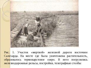 Рис. 1. Участок «мертвой» железной дороги восточнее Салехарда. На месте где б