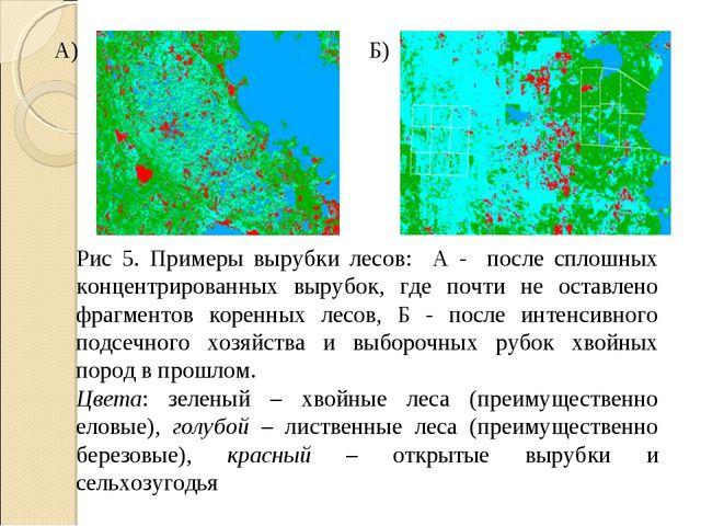 Рис 5. Примеры вырубки лесов: А - после сплошных концентрированных вырубок, г...