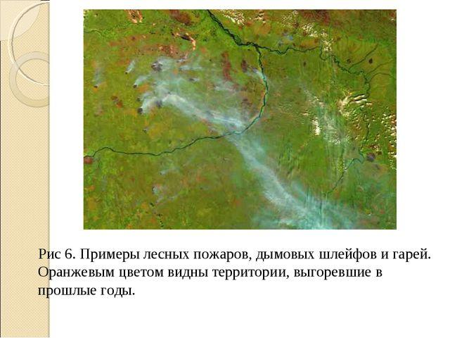 Рис 6. Примеры лесных пожаров, дымовых шлейфов и гарей. Оранжевым цветом видн...