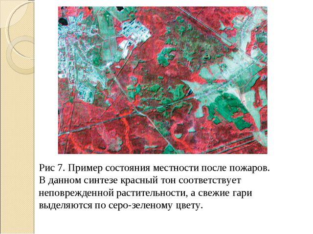 Рис 7. Пример состояния местности после пожаров. В данном синтезе красный тон...