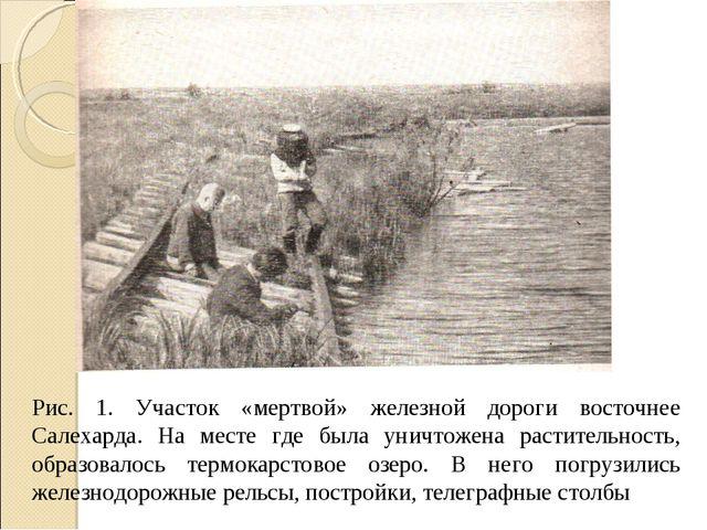 Рис. 1. Участок «мертвой» железной дороги восточнее Салехарда. На месте где б...