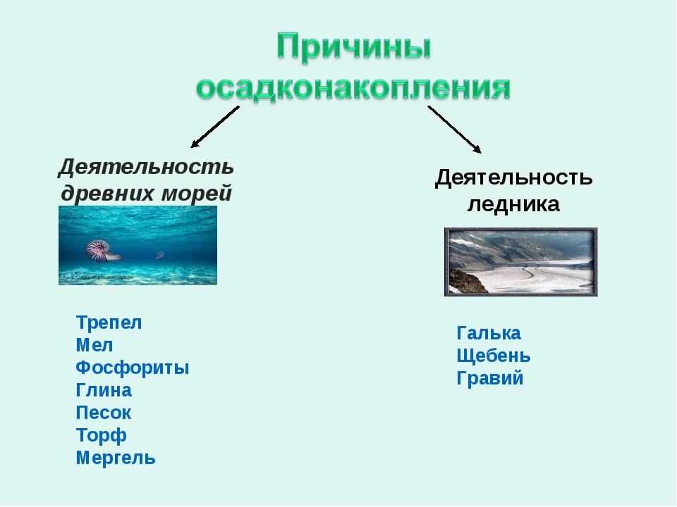 Деятельность древних морей Деятельность ледника Трепел Мел Фосфориты Глина Пе...