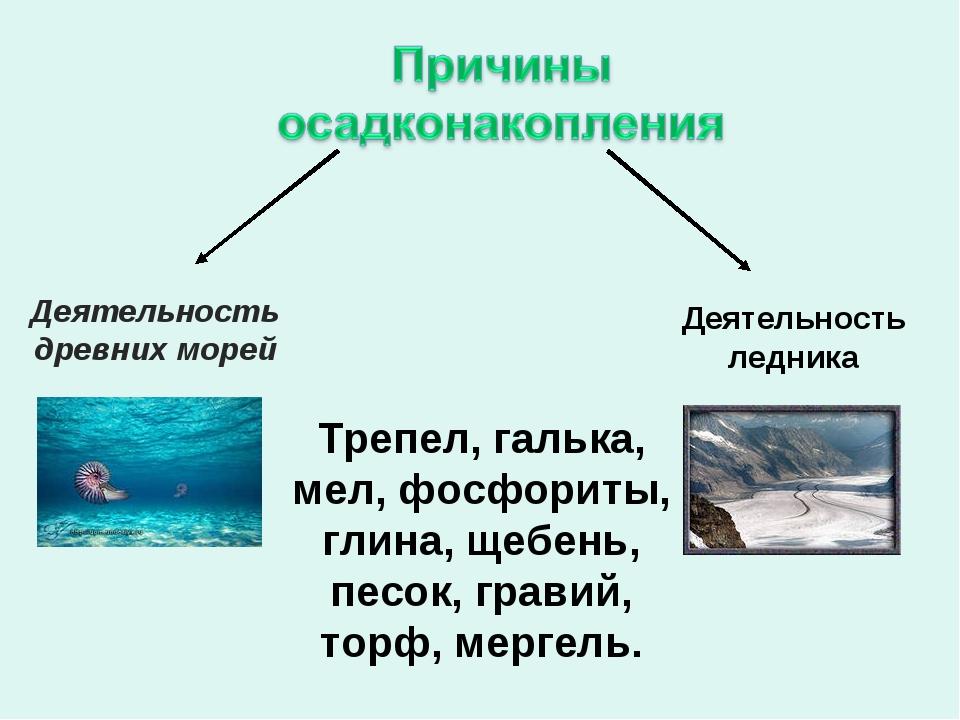 Деятельность древних морей Деятельность ледника Трепел, галька, мел, фосфорит...
