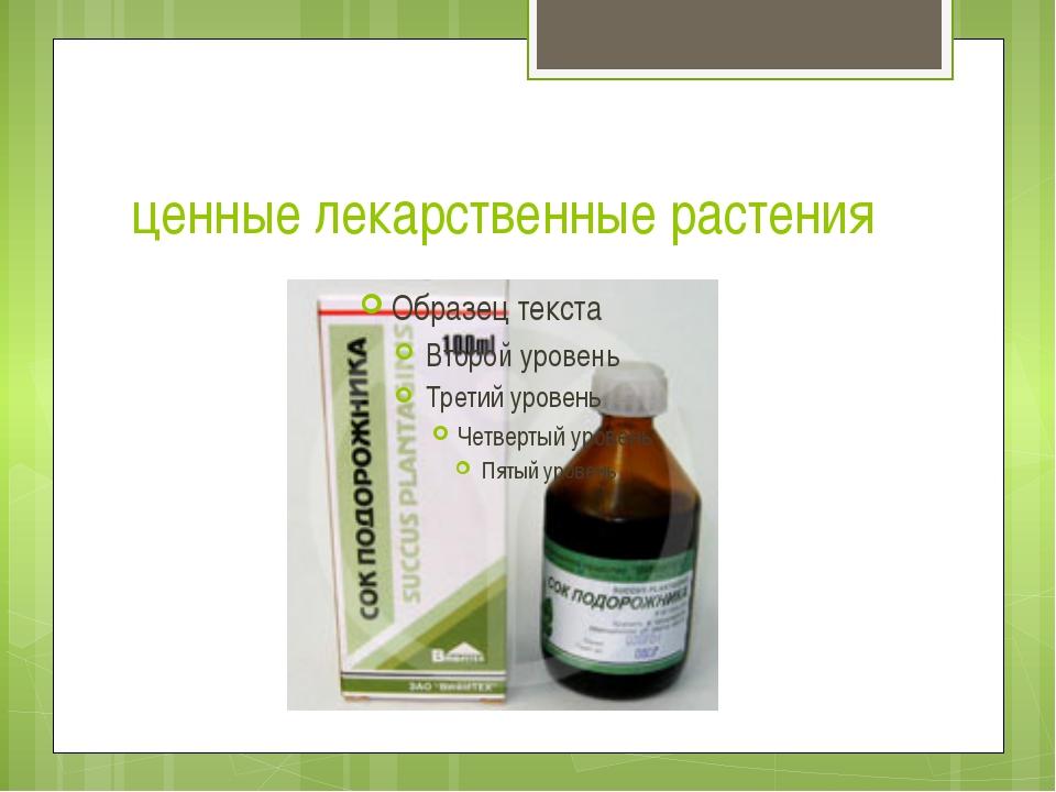 ценные лекарственные растения