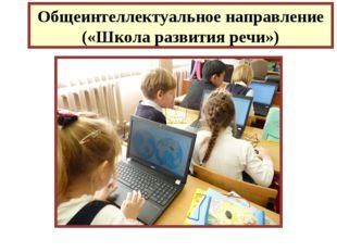 Общеинтеллектуальное направление («Школа развития речи»)
