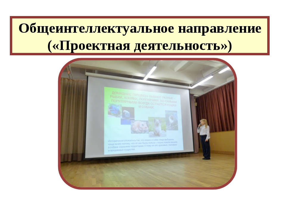 Общеинтеллектуальное направление («Проектная деятельность»)