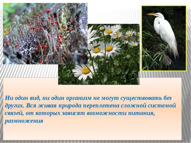 Ни один вид, ни один организм не могут существовать без других. Вся живая при...