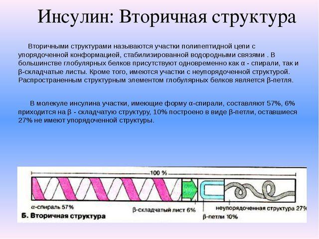 Инсулин: Вторичная структура Вторичными структурами называются участки полипе...