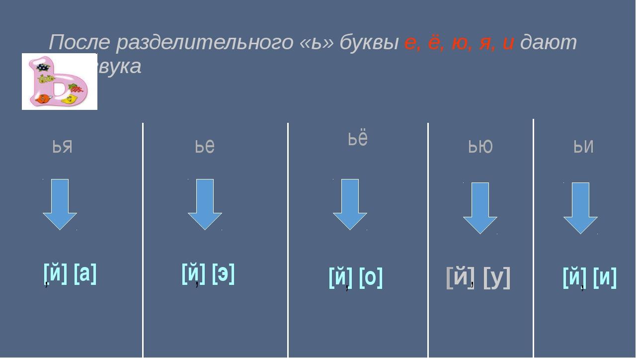 После разделительного «ь» буквы е, ё, ю, я, и дают два звука ья [й] [а] , ье...