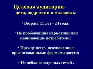 Целевая аудитория- дети, подростки и молодежь: Возраст 11 лет - 24 года; Не п