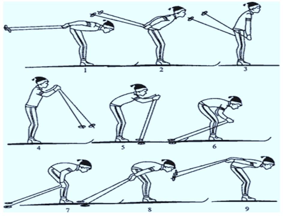 остывшие лыжные хода с картинками реализацию