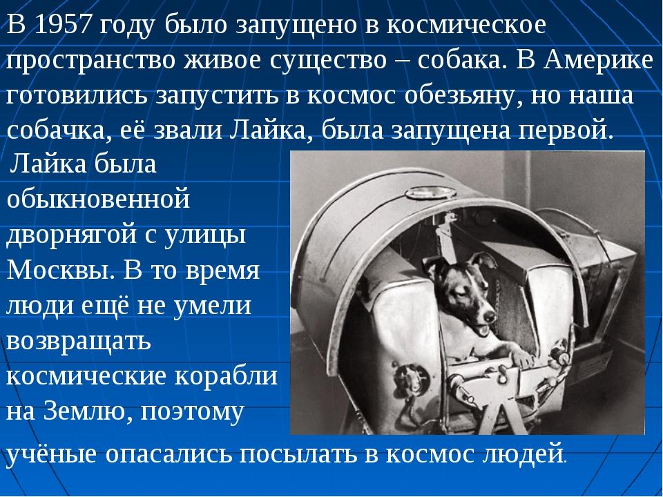 В 1957 году было запущено в космическое пространство живое существо – собака....