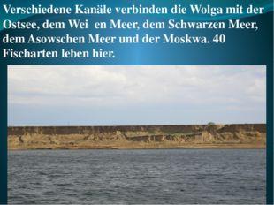 Verschiedene Kanäle verbinden die Wolga mit der Ostsee, dem Weiβen Meer, dem