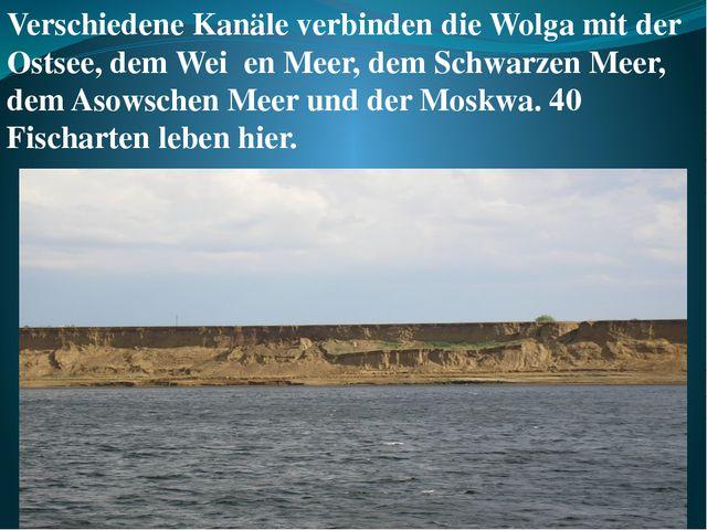 Verschiedene Kanäle verbinden die Wolga mit der Ostsee, dem Weiβen Meer, dem...