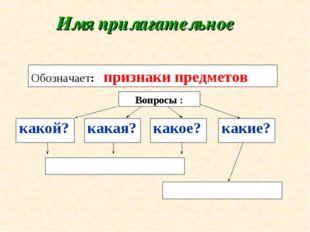 Имя прилагательное Вопросы : Обозначает: признаки предметов какой? какая? как