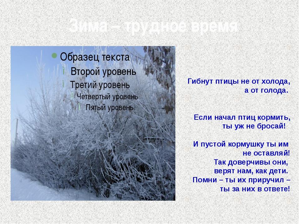 Зима – трудное время Гибнут птицы не от холода, а от голода. Если начал птиц...