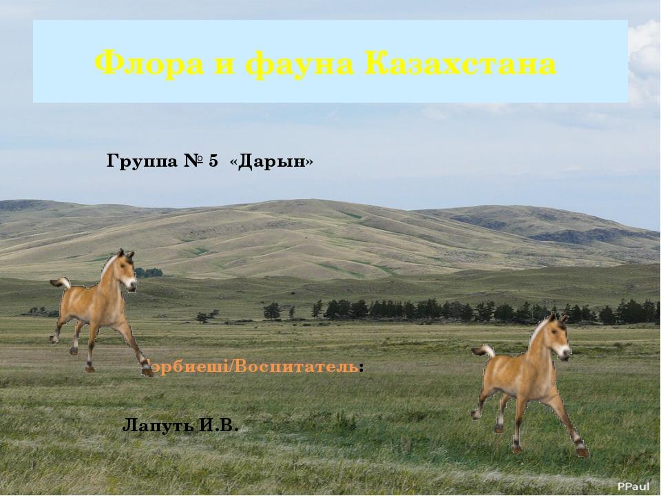 Флора и фауна Казахстана Группа № 5 «Дарын» Тәрбиеші/Воспитатель: Лапуть И.В.