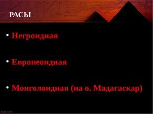 РАСЫ Негроидная Европеоидная Монголоидная (на о. Мадагаскар)