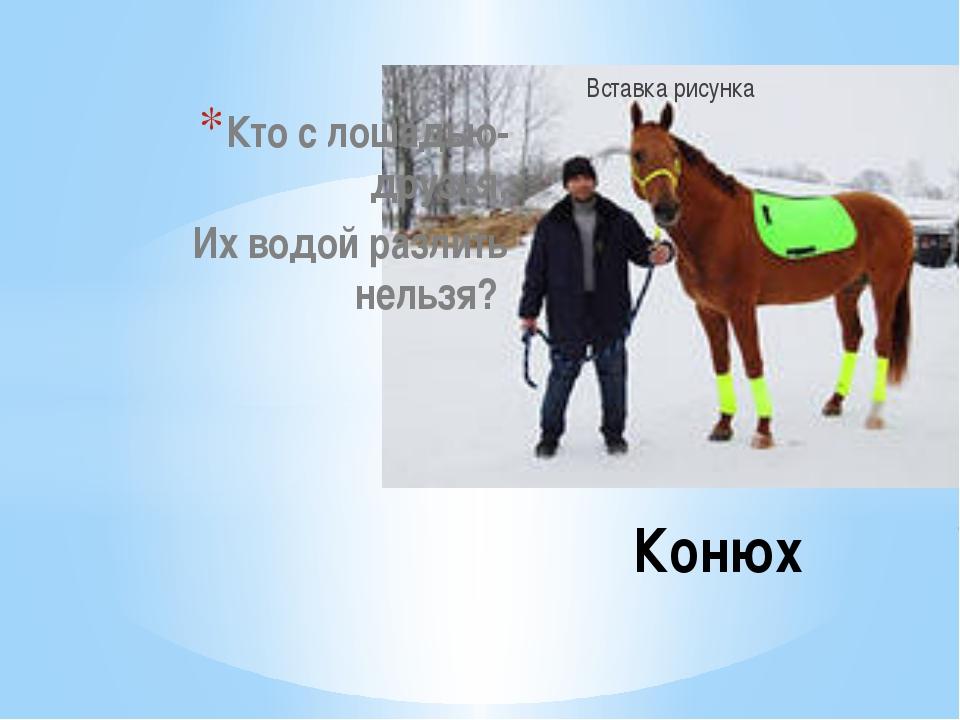 Кто с лошадью- друзья, Их водой разлить нельзя? Конюх