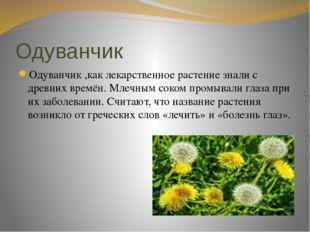Одуванчик Одуванчик ,как лекарственное растение знали с древних времён. Млечн
