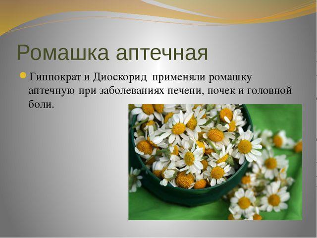 Ромашка аптечная Гиппократ и Диоскорид применяли ромашку аптечную при заболев...