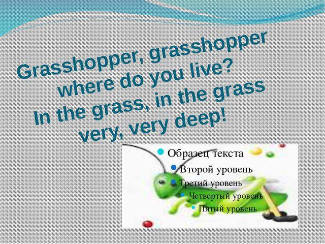 Grasshopper, grasshopper where do you live? In the grass, in the grass very,...