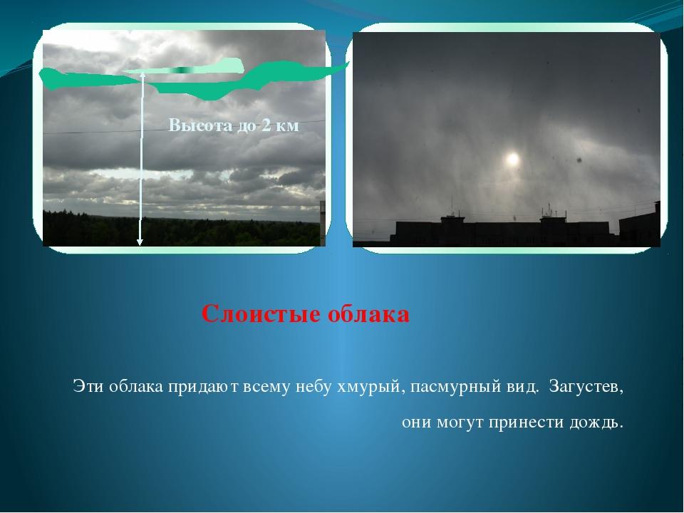 Эти облака придают всему небу хмурый, пасмурный вид. Загустев, они могут при...