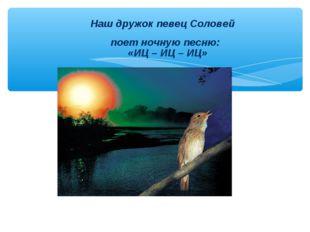 Наш дружок певец Соловей поет ночную песню: «ИЦ – ИЦ – ИЦ»