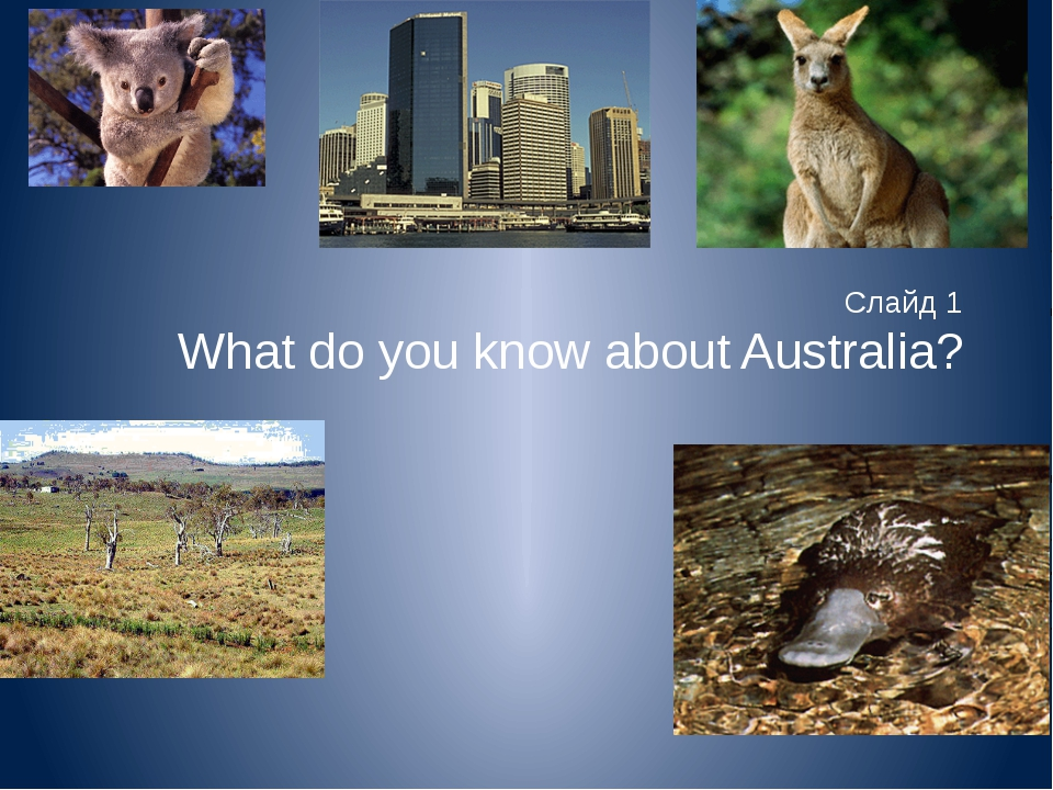 Слайд 1 What do you know about Australia?
