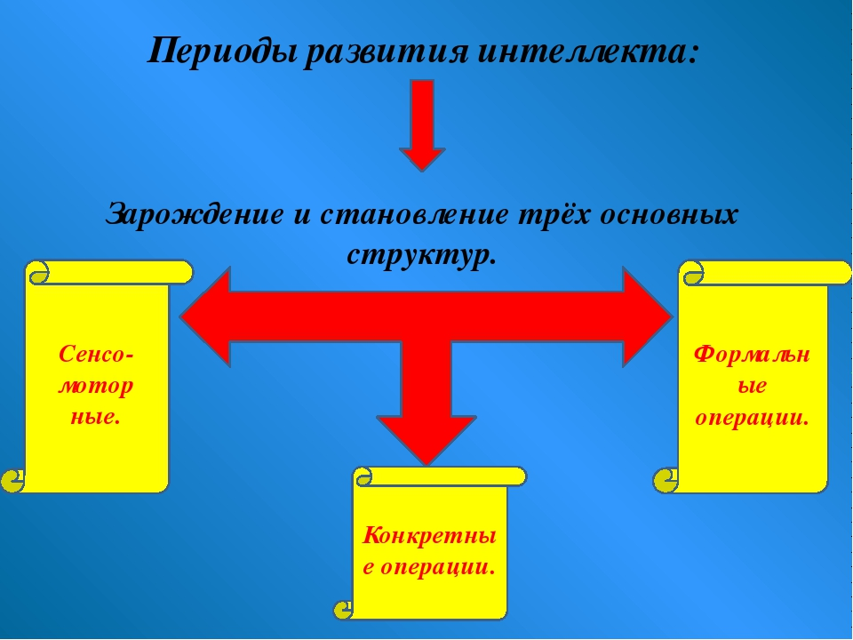 Периоды развития интеллекта: Зарождение и становление трёх основных структур....