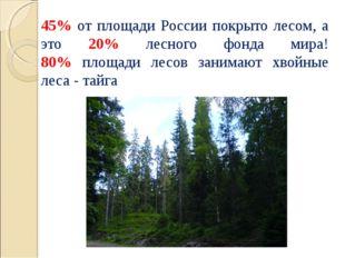 45% от площади России покрыто лесом, а это 20% лесного фонда мира! 80% площад